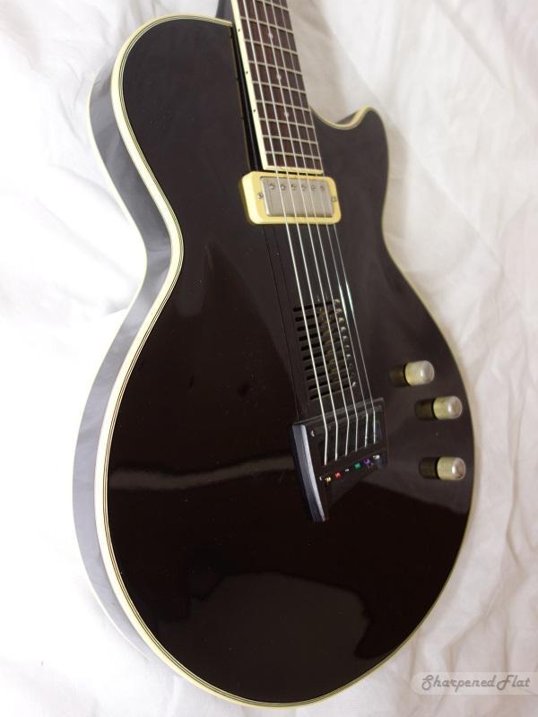 Ibanez AE-200